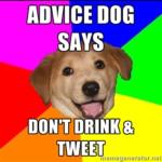 advicedog